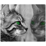Коврик для мыши Speedlink SILK, Cat